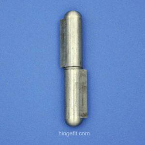Hinge Pin SSS 100mm